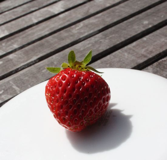 first strawberry of the year!