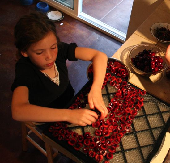 arranging cherries