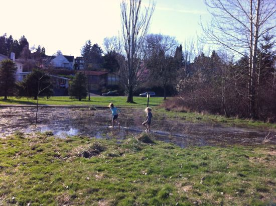Exploring knee deep mud puddles