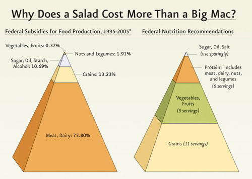 why a salad costs more than a big mac